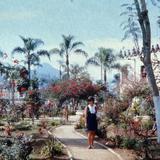Plaza y Palacio Municipal