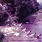 Lavanderas en los alrededores de Taxco Guerrero 1956.