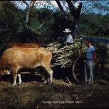 Tipos Mexicanos Yuntero San Luis Potosi (c. 1953).