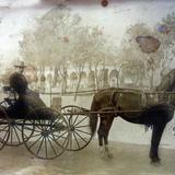 LUGAR DESCONOCIDO  Una plaza con el hacendado presumiento su carruaje de Caballos.