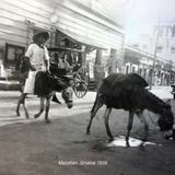Escena Callejera  de  Mazatlán, Sinaloa 1939