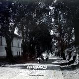 Calzada de La Quinta.