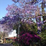 Parque paseo de las Artesanías. Abril/2018