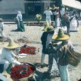 Tipos Mexicanos Vendedores de chiles Córdoba, Veracruz.