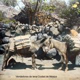 Tipos Mexicanos Vendedores de lena Ciudad de México.