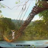 Puente de lianas por el fotografo C B Waite.
