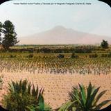 Volcan Malitzin entre Puebla y Tlaxcala por el Fotógrafo Charles B. Waite