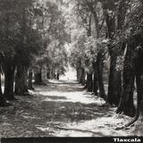 Calle en Tlaxcala
