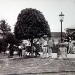 Jardin Mercado.