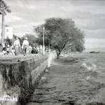 Chapala, Jalisco ( 1954 ).