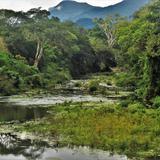 Río Moralillo