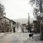 Calle Cupatitzio.