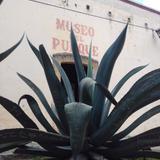 Museo del Pulque. Junio/2018