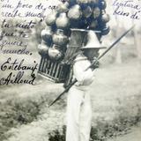 Tipos mexicanos vendedor de cantaros ( Circulada el 25 de Agosto de 1905 ).