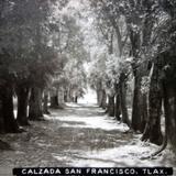 Calzada de San Francisco Tlaxcala .