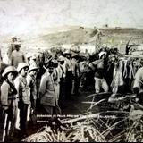 Avanzada de palos prietos con ametralladoras Durante La Revolucion Mexicana.