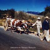 Tipos Mexicanos un carretero Alderredores de Pátzcuaro, Michoacán. .