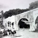 Puente Vicente Guerrero.