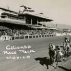 Hipódromo de Agua Caliente