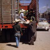 Descargando sandías (1950)