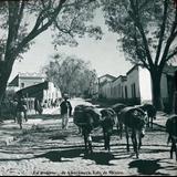 Tipos Mexicanos Un arriero  de Amecameca, Edo. de México.