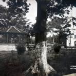 Templo y Plaza.