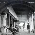 Portal Camarena.