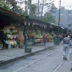 Mercado de flores  Ciudad de México 1954