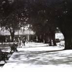 Jardin Publico.
