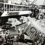 Exportacion del Henequen.