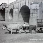 Tipicos detalles del Puente.