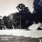 Caballos Incinerados en La Alameda por la Ave, de Los Hombres Ilustres durante La Decena Trágica Febrero de (1913)  Ciudad de México