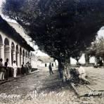 Palacio y Parque.