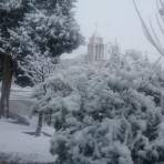 Colonia Terrazas, Delicias Chihuahua con nieve.