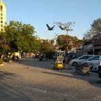 Plaza Plutarco Elías Calles